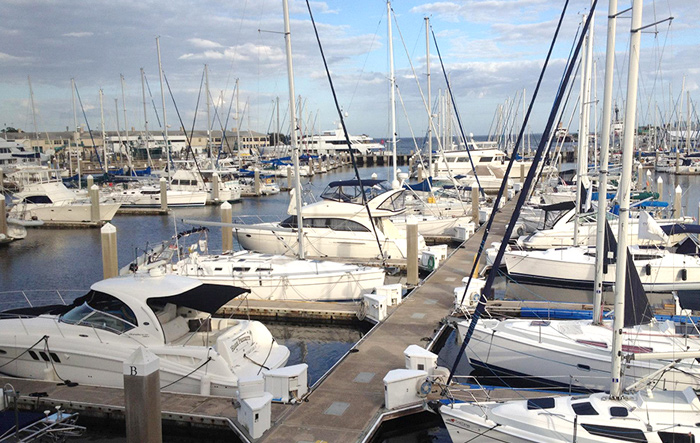 harborage marina 1